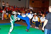 3ème championnat de kick-boxing 2011 — Photo