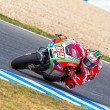 Foto de Stock  : Nicky Hayden pilot of MotoGP