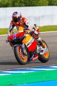 Casey Stoner pilot of MotoGP — Stock Photo
