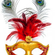 Carnival mask — Stock Photo #19188535