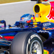 Постер, плакат: Team Red Bull F1 Sebastian Vettel 2012