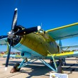 Stock Photo: Aircraft Antonov An-2