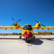 Seaplane Canadair CL-215 — Stock Photo #28074123