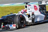 Team Sauber F1, Kamui Kobayashi, 2012 — Foto Stock