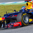 Foto Stock: Team Red Bull F1, SebastiVettel, 2012