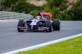 Team Toro Rosso F1,  Jean-Eric Vergne, 2014 — Foto Stock
