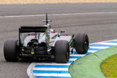 Team McLaren F1,  Kevin Magnussen, 2014 — Stok fotoğraf