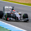 Постер, плакат: Team Sauber F1 Adrian Sutil 2014