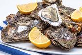 牡蛎 — 图库照片
