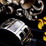 Watch of bracelet — Stock Photo #51578607