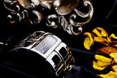 Watch armband — Stockfoto