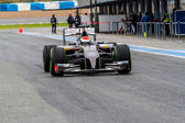 Team Sauber F1, Adrian Sutil, 2014 — Stock Photo
