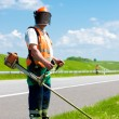 Road landscapers cutting grass along the road — Stock Photo
