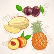 Exotic fruits - 2 — Stock Vector