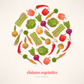 Circle of vegetables — Stock Vector