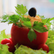 Stuffed tomato with an olive — Stock Photo