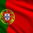 Flag of Portugal — Stock Photo #28919861