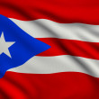 Flag of Puerto Rico — Photo