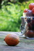 Gooseberry close up and bank for preservation — Stock Photo