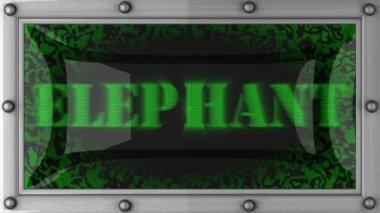 Elefant auf geführt — Stockvideo