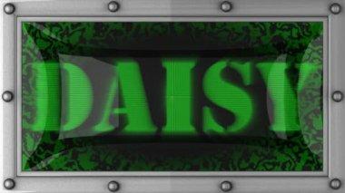Daisy on led — Stock Video