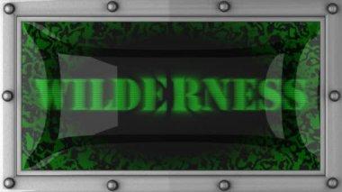 Wilderness üzerinde yol açtı — Stok video