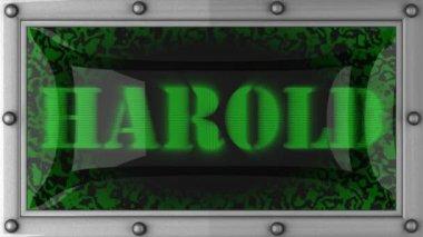 Harold on led — Stock Video