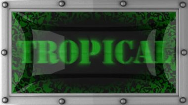 Tropical on led — Stock Video