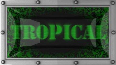 Tropikalny na led — Wideo stockowe
