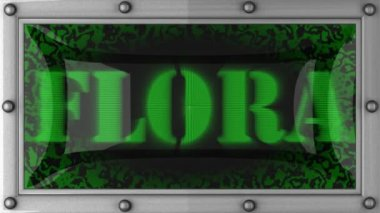 Flora on led — Stock Video