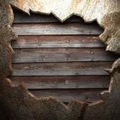 Sulla parete di pietra — Foto Stock