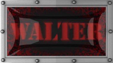 Walter op geleid — Stockvideo
