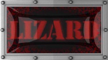 Lizard on led — Stock Video