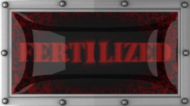 Fertilized on led — Vídeo de stock