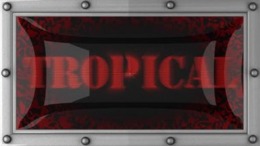 Tropical on led — Stockvideo