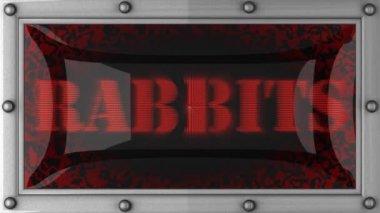 兔子 led — 图库视频影像
