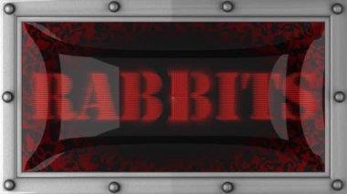 Rabbits on led — Stock Video