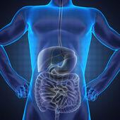 Radiografia de entranhas humanas — Foto Stock