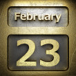 Stock Photo: February 23 golden sign