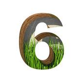 Vettore erba tagliate nella figura 6. incollare a qualsiasi sfondo — Vettoriale Stock