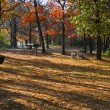 Camp ground in the fall — Stock Photo #14037091