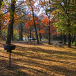 Camp ground in the fall — Stock Photo