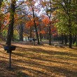 Camp ground in the fall — Stock Photo #14043637