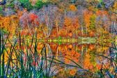 Reflections of Autumn in High Dynamic Range — Stockfoto