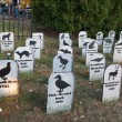 Stock Photo: Animal Extinction grave site