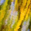 Autumn Reflections of a willow tree — Stock Photo #39527815