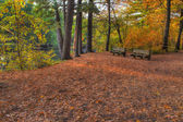 Colorful scenic Landscape in HDR — Stock Photo