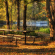 HDR landscape of a forest and pond in soft focus — Stock Photo #40481007