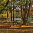 HDR landscape of a forest and pond. — Stock Photo #40481093