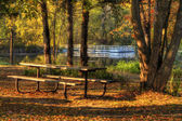 HDR landscape of a forest and pond in soft focus — Stock Photo